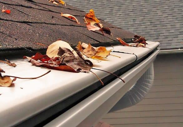 Gutter Screens: Are They Worth It?