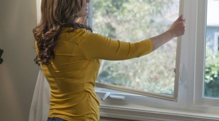 The Case for Removing Window Screens for the Winter