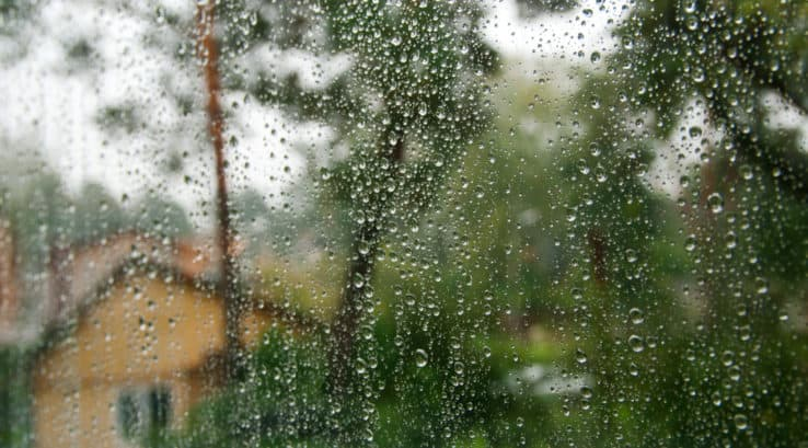 Why is My Home's Window Leaking? 5 Things To Do to Fix It