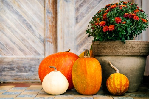 Fall Home Trends