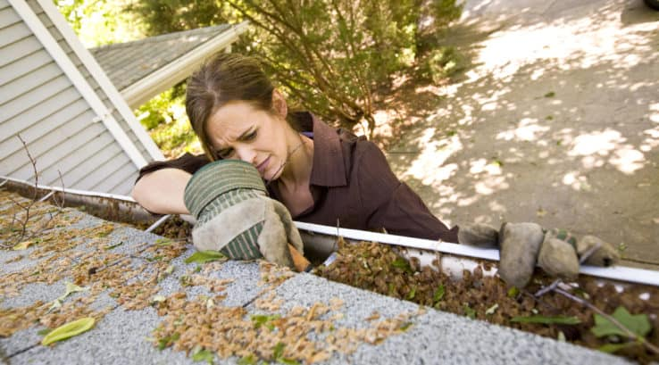 Best Time of Year to Clean Your Gutters