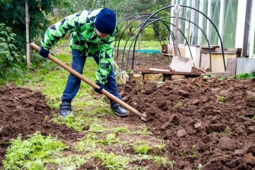 Prepare Your Garden For Winter Fall Gardening Tips