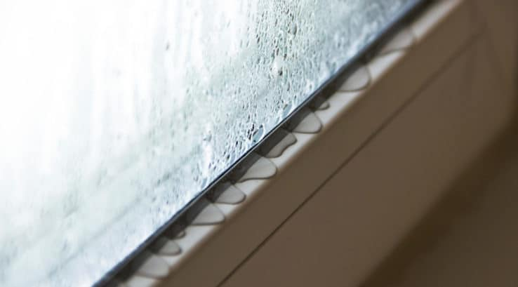 Condensation On Windows in The Summer