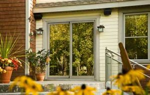 Exterior view of sliding patio door with plants and greenery surrounding