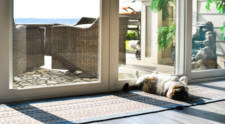 Are Sliding Glass Doors Energy Efficient?